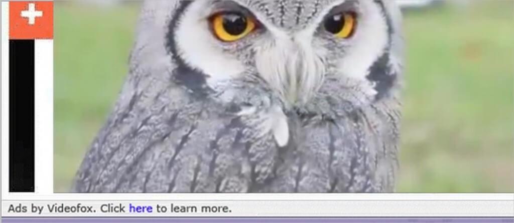 remove-videofox-ads