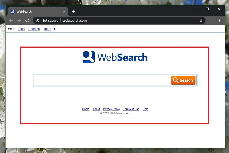 Websearch Virus