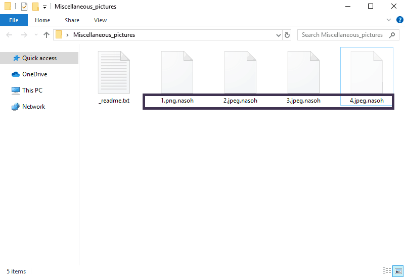 Nasoh File