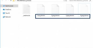.Domm File