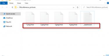 Lmas Virus File