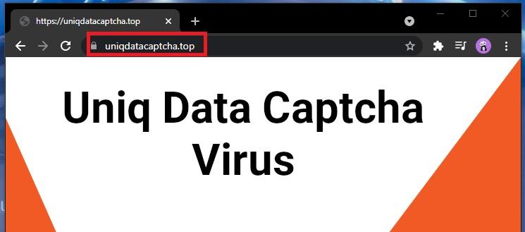 Uniq Data Captcha