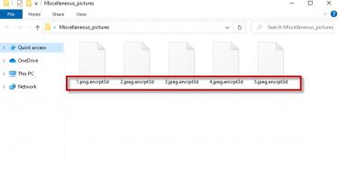 encrpt3d file