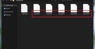 Redl Virus File