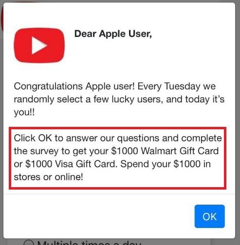 $1000 Visa Gift