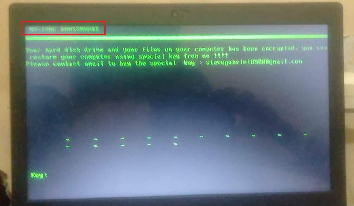 Mustang Ransomware