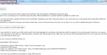 sekhmet ransomware