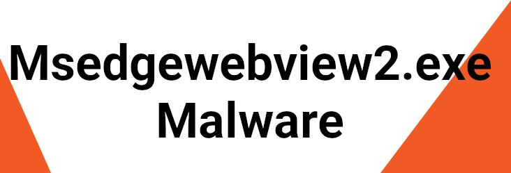 msedgewebview2.exe