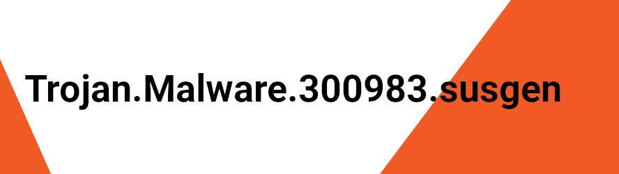 Trojan.Malware.300983.susgen