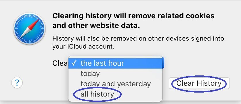 Safari Delete History 1